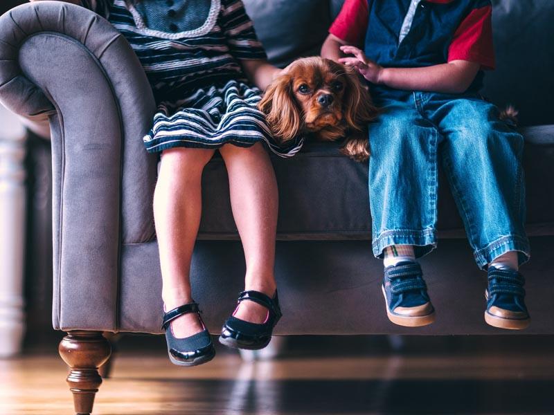 Kinder Hund Hunderasse - Hunde123.de